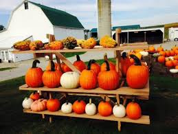 Patterson Pumpkin Patch Nc by The 12 Best Pumpkin Patches In Ohio For 2016