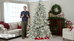 Christmas Trees Prelit by 7 5 Ft Natural Cut Flocked Vermont Spruce Pre Lit Christmas Tree