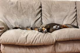 big sofa kaufen big sofa test preisvergleich testsieger