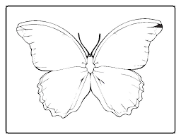 Printable Coloring Pages Of Butterflies 3532 1250x769 Free