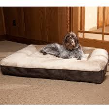 Kirkland Dog Beds by Brown Kirkland Signature Dog Bed Selecting Kirkland Signature