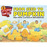 Pumpkin Pumpkin By Jeanne Titherington by Pumpkin Pumpkin Jeanne Titherington 9780688099305 Amazon Com Books