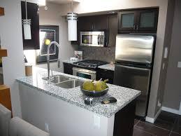 100 Modern Kitchen For Small Spaces Condo Morganallen Designs