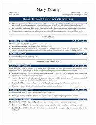 Examples Of Summary For Resume Awesome Entry In Professional Level