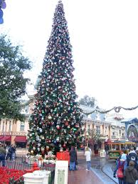 Mr Jingles Christmas Trees Hollywood by Disney World Vs Disneyland Where You Should Go Right Now