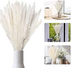 sporgo pasgras natürliche pasgras getrocknet pas gras phragmites trockenblumen blumenstrauß deko für hause wohnzimmer inneneinrichtungen