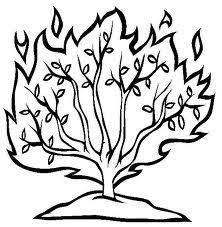 Free Passover Coloring Pages Color In This Picture Of The Burning Bush And Others With Our Library Online