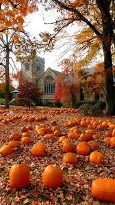 Pumpkin Patch Massachusetts by 759 Best Fall Into Autumn Images On Pinterest Nature Fire And