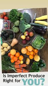 The Scoop On Imperfect Produce - Good Cheap Eats Imperfect Produce Subscription Review Coupon March 2018 A Of The Ugly Service 101 Working Promo Code April 2019 Coupons In San Francisco Bay Area Chinook Book 50 Off Produce Coupons Promo Discount Codes Bart Ads On Behance 10 Schimiggy I Ordered My Fruits And Vegetables From For 6 Travel Rants Raves New Portland