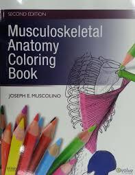 Musculoskeletal Anatomy Coloring Book 2e Amazoncouk Joseph E Muscolino DC 8601400014356 Books