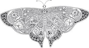 Butterflies Coloring Pages Htm Best Picture Butterfly For Adults
