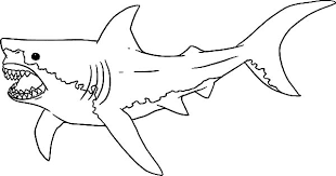 Drawing Jaws Colouring Page Drawing Jaws Colouring Page