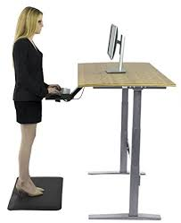 Ergo Smart Standing Desk by Rise Up Electric Adjustable Height Standing Desk W Beautiful Real