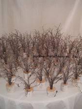 Lot 10 Rustic Wedding Decor Mini Tree Centerpiece WHITE BIRCH BARK 14