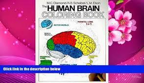 PDF The Human Brain Coloring Book Concepts Series Marian C Diamond Full