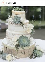 Naked Succulent Cake Wedding