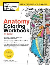 The Anatomy Coloring Book 4th Edition Inspirationa Valid Workbook