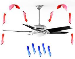 summer vs winter ceiling fan rotation ceiling fans ceiling fan