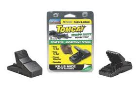 tom cat mouse trap heavy duty tomcat mouse trap 2ct fastenal