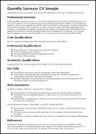 Key Skill In Resume Quantity Surveyor Sample Skills Graphic Designer