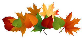 Fall leaves fall leaf clipart no background free clipart images