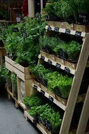 Mrs Heathers Pumpkin Patch Albany by Best 25 Farm Stand Ideas On Pinterest Vegetable Stand Produce