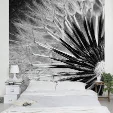 fototapete pusteblumen pusteblume schwarz weiß vliestapete quadrat größe hxb 192cm x 192cm