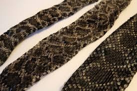 Dresser Rand 37 Coats Street Wellsville Ny by 100 Shed Snake Skin Display Snake Skin Bar Rail Cover