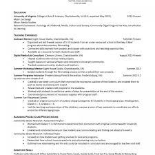 Example Of No Experience Resume Professional What Is Professional