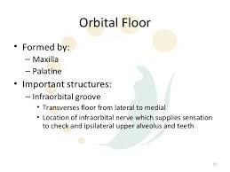 Fracture Orbital Floor Icd 10 by Orbital Fractures