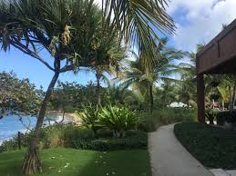 100 W Resort Vieques File Island Insidejpg Ikimedia Commons