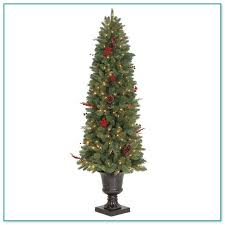 Charlie Brown Christmas Tree Home Depot by Tree Sale Home Depot 3