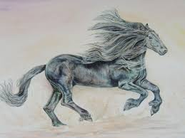 Arabian Thoroughbred By Elizabeth Sadler The Exquisite Musculature And Play Of Light On Body