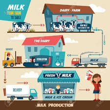 Stages Of Production And Processing Of Milk From A Dairy Farm ... Milk Truck Explosion The Simpsons Youtube Are There Any Anbiotics In Your Unisensor Historic Trucks September 2012 Trident Reviews Mack Australia Shatto Brings Back The Milkman With Delivery Service Beauty Is In Details 2016 Volvo Xc90 Test Drive Design Coffee New Home Of Coffee Commander Hooniverse Thursday Got About Plains Dryplains Dairy Collection And Reception Of Milk Processing Handbook Data Specialists Inc Erp Software Solutions