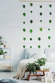 grüne blätter auf weißen wand der trendige schlafzimmer innenraum mit kuscheligen bett und großstadtdschungel auf holzbank stockfoto und mehr bilder