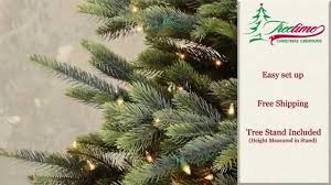 Balsam Spruce Artificial Christmas Trees by Hamilton Spruce Artificial Christmas Tree By Treetime Christmas