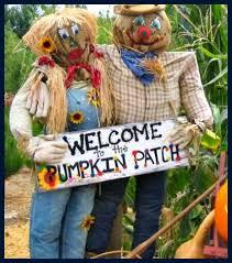 Best Pumpkin Patch In San Bernardino County by The Pumpkin Patch In Yucaipa Is Fun For The Entire Fami
