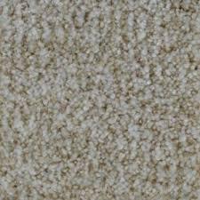 Par Rating Carpet by Home Decorators Collection Carpet Sample Galore I Color Cody