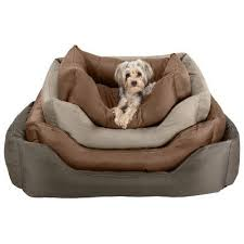 Wayfair Dog Beds by 83 Best Praise Your Pet Images On Pinterest Puppies Angles And