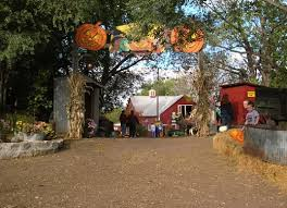 Pumpkin Patch Daycare Kearney by 80 Best Omaha To Do Around Town Images On Pinterest Calendar