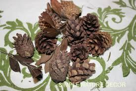 Cinnamon Smell Pine Cones