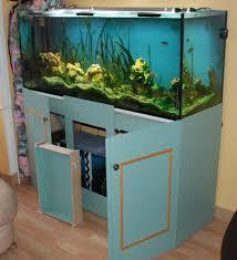 aquarium poisson prix aquarium prix poisson naturel