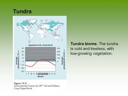 global climates and biomes ppt download