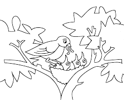 Free Coloring Pages Of Baby Birds In Nest Bird