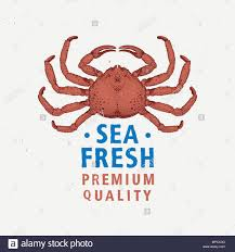 Coloriage Ermite De Crabe