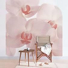 apalis fototapete orchidee vliestapete svelte orchids