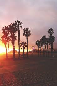Santa Monica Vibes