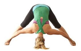 Yoga Wide Leg Forward Bend Prasarita Padottanasana Pose