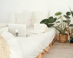 10 schlafzimmer pflanzen für einen gesünderen schlaf careelite