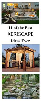25+ Trending Zero Scape Ideas On Pinterest | Small Xeriscape ... Best 25 Kids Play Area Ideas On Pinterest Preschools In My My Backyard Equal Area Map Projections Desert Landscaping Backyard Unique Parties Summer Wife Was Looking At Structures To Give Our Three Kids The Chicken Chick Coccidiosis What Keepers Trending Zero Scape Small Xeriscape Fruit Trees In My Backyard Ami Florida Youtube 10 Outdoor Acvities For Sandbox And Outdoor Alien Invasion An Emu Club Adventure Ruben Diy